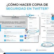 Infografia Copia de seguridad twitter